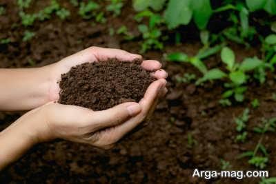 استفاده از خاک غنی برای بستر کشت