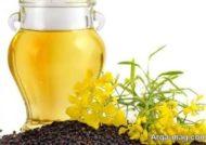 خاصیت های ضد سرطانی روغن کانولا