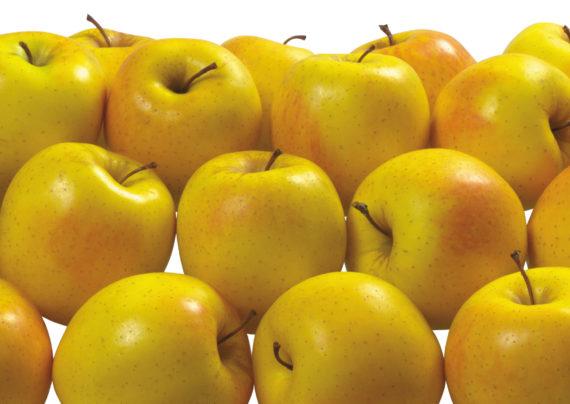خواص سیب زرد بر سلامت بدن