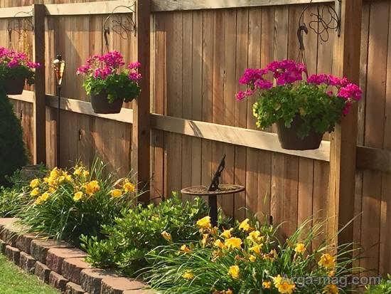 مجموعه ی متنوع مدل باغ کوچک