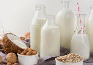 طرز تهیه شیر گیاهی