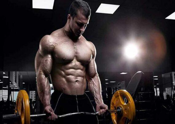 چگونه عضله سازی سریع داشته باشیم؟