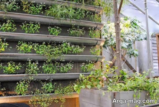 باغچه عمدی با طراحی خاص