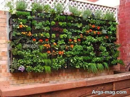 باغچه ای زیبا روی دیوار