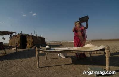 آشنایی با کوچ عشایر نشین در کویر نمکی هند