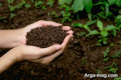 استفاده از خاک مرغوب برای بستر کشت