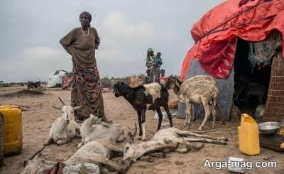 جاذبه های گردشگری در سومالی