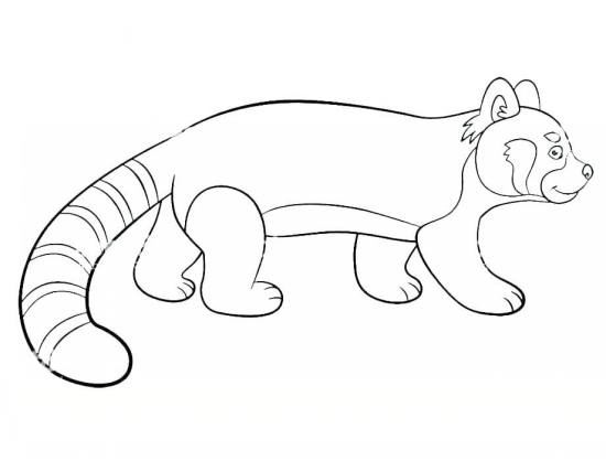 نقاشی خاص پاندا برای بچه ها