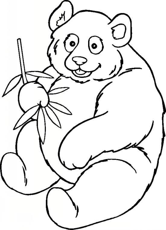 نقاشی پاندای سرخ