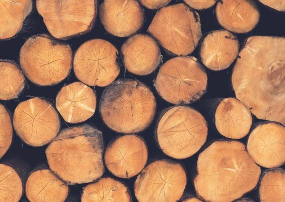 آشنایی با انواع چوب