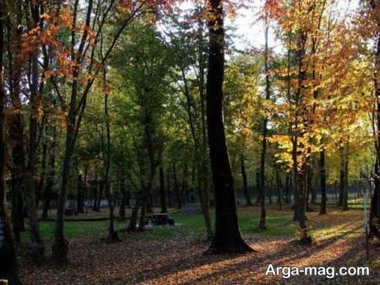 پارک قرق گرگان