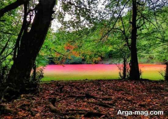 طبیعت هسل مازندران