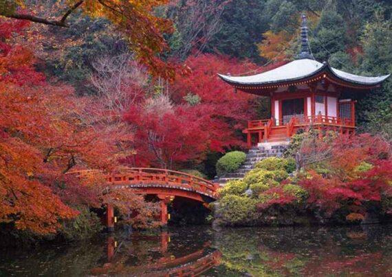 آشنایی با دیدنی های کیوتو