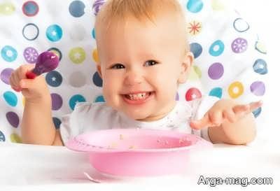 ادویه غذای کودک از چند ماهگی