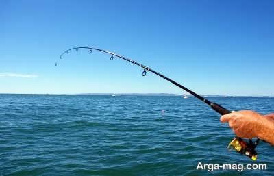 تعبیر خواب برای ماهیگیری