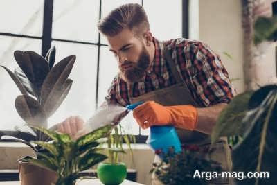 دستورالعمل آبیاری کردن گیاهان