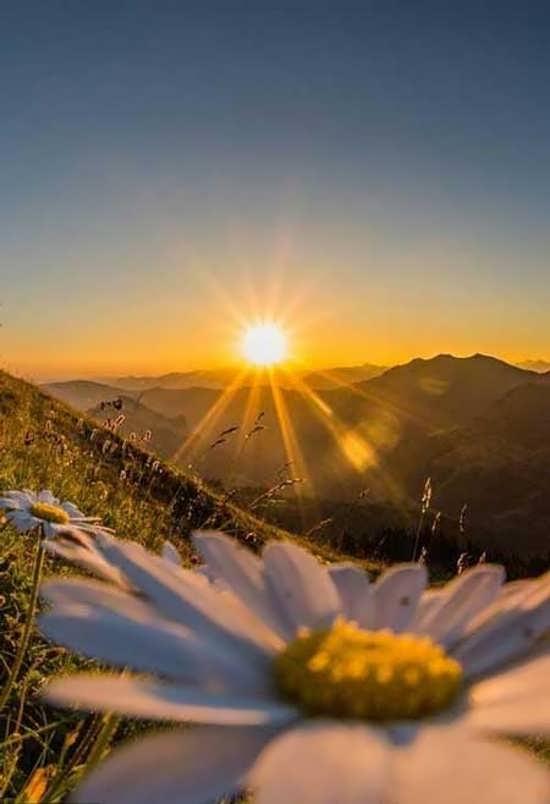عکس پروفایل طلوع خورشید جدید و دلنشین