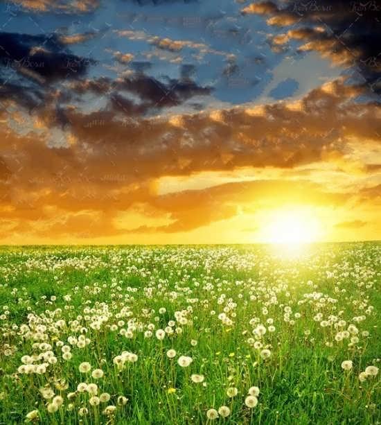 تصویر پروفایل شیک طلوع خورشید