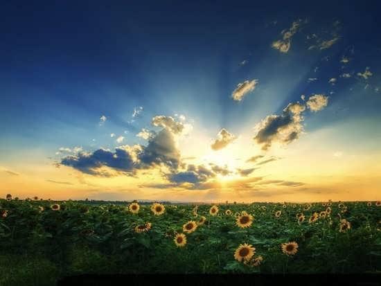 عکس پروفایل متفاوت و جدید از طلوع خورشید
