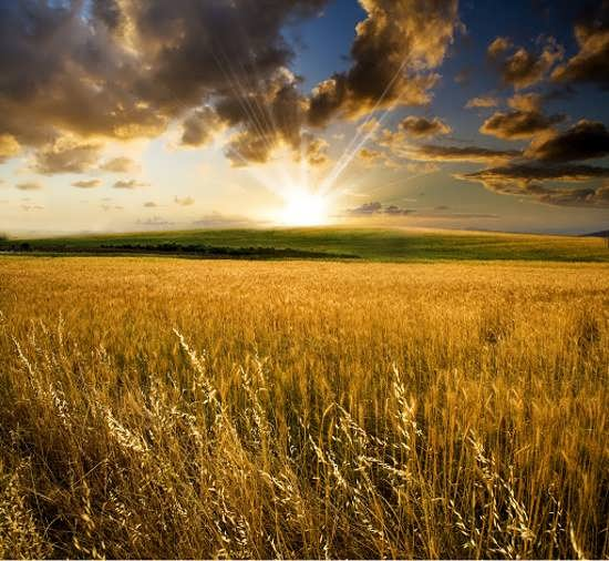 عکس پروفایل طلوع خورشید در طبیعت