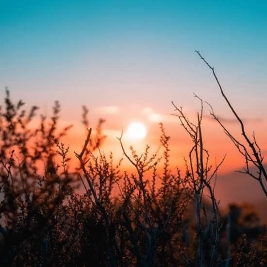 تصویر پروفایل جدید و متنوع از طلوع خورشید