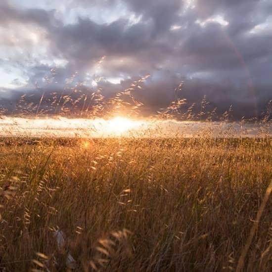 عکس پروفایل جدید و جالب از طلوع خورشید