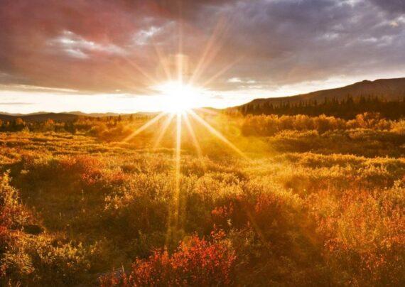 آشنایی با انواع عکس پروفایل طلوع خورشید