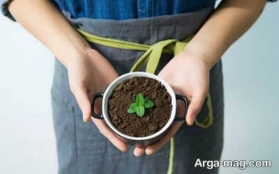 طریقه تهیه کود از تفاله چای و مزایای استفاده از آن