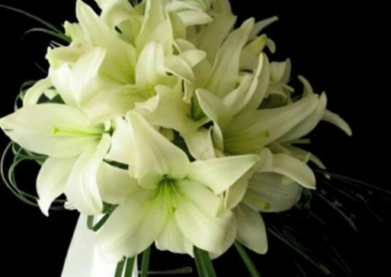 ایده هایی لاکچری از دسته گل عروس لیلیوم