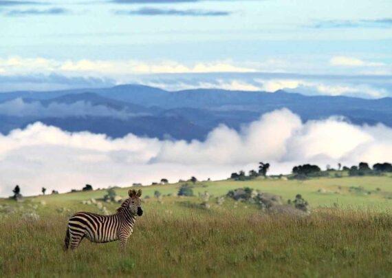 آشنایی با دیدنی های مالاوی