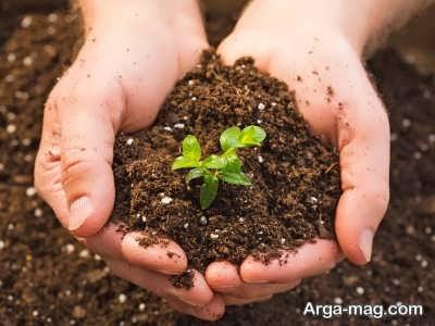 دستورالعمل کاشت بذر ملون