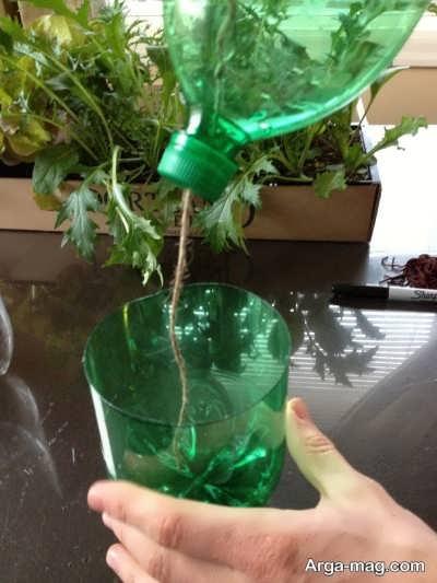 دستورالعمل کاشت بذر گیاه درون بطری