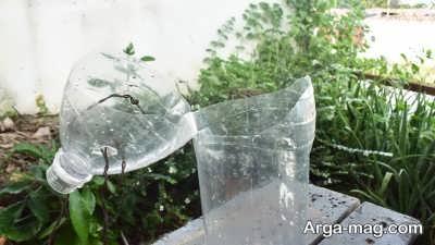 شرایط لازم برای پرورش گیاه در بطری نوشابه