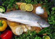 شیوه های تشخیص ماهی تازه