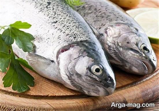 تشخیص ماهی سالم