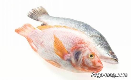 تفاوت ماهی تازه و کهنه