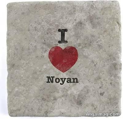 معنی اسم نویان از گویش های مفاوت