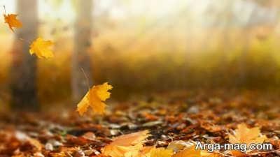 شعری زیبا در مورد پاییز