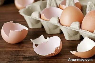 برخی خاصیت های پوست تخم مرغ