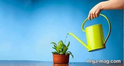 تعبیر خواب گلدان خاکی چیست؟