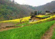 روستای مهم زرگر