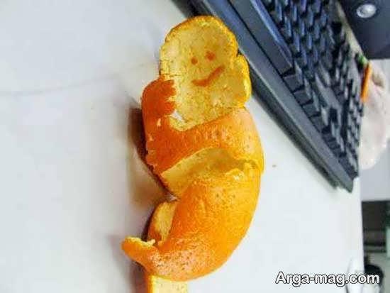 مجموعه ای زیبا و جذاب از تزیین میوه با نارنگی