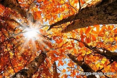 متن در مورد پاییز