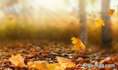 انشا دلنشین در مورد پاییز