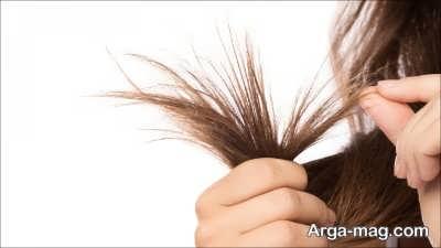 دوشاخه شدن مو یعنی چه؟