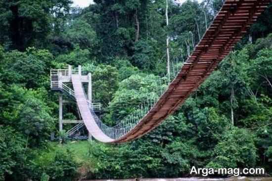 پل چوبی کامرون