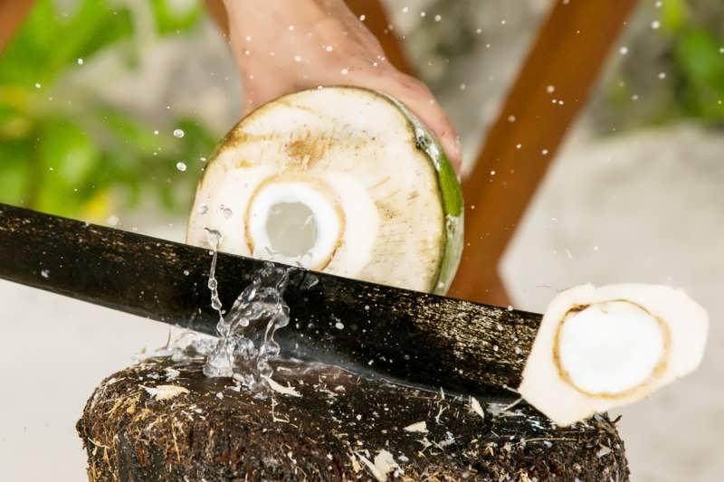 استفاده از فر برای شکستن نارگیل