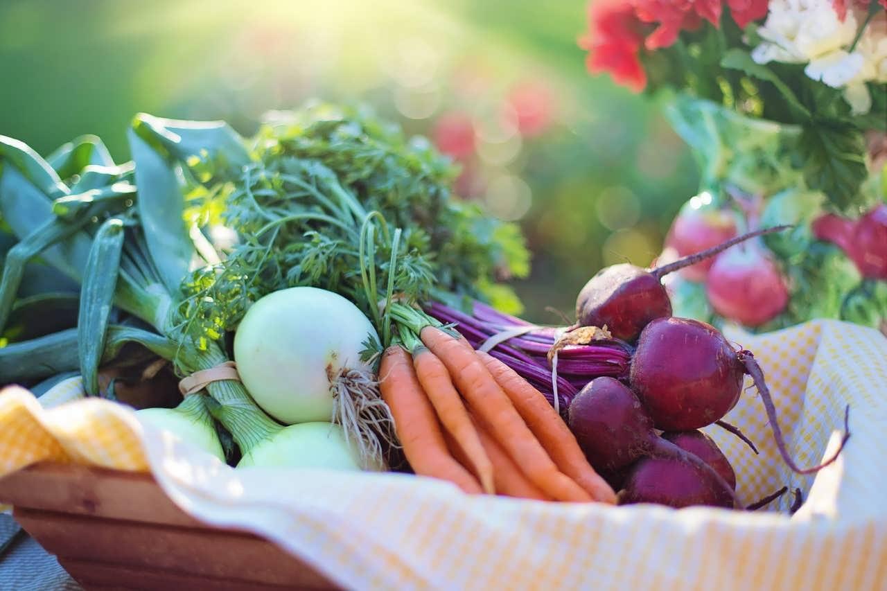 آشنایی با نحوه کاشت سبزیجات در زمستان