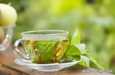 خاصیت ها و ویژگی های چای نعناع