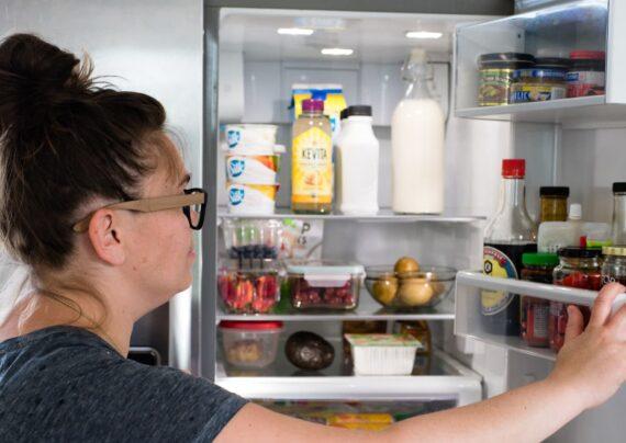 آشنایی با اصول مراقبت از یخچال